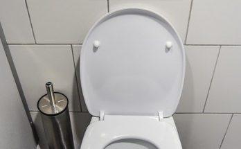 wc školjka